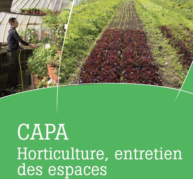 capa-horticulture-entretien-des-espaces