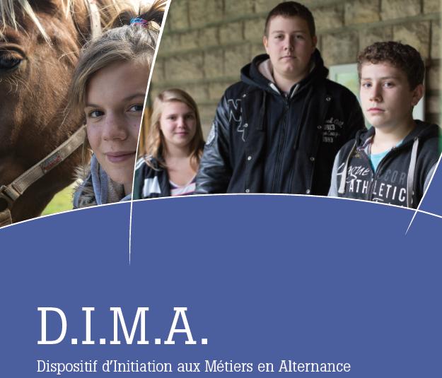 D.I.M.A